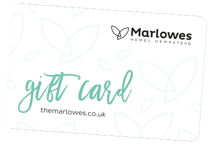 Marlowes Gift card